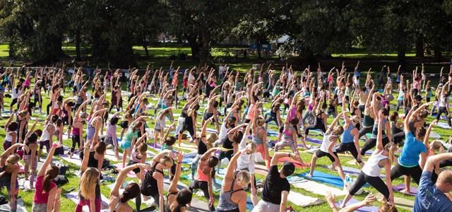 Syd-Festival-Yoga.jpg